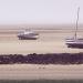 Dans le port du Croisic : le grand Traict à marée basse